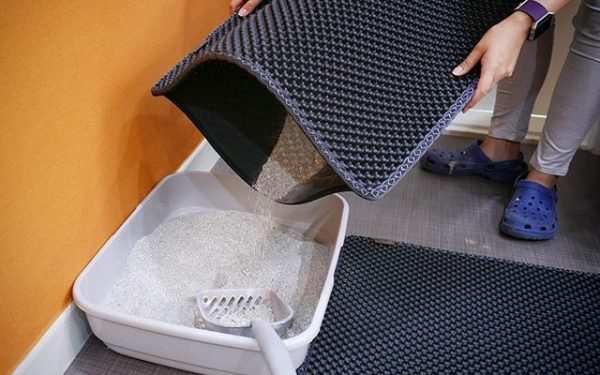 How to clean Cat litter Mat?